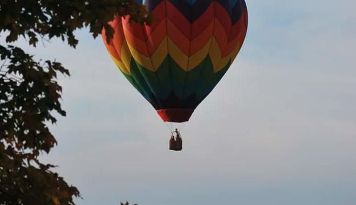 Royalty Ballooning Fall