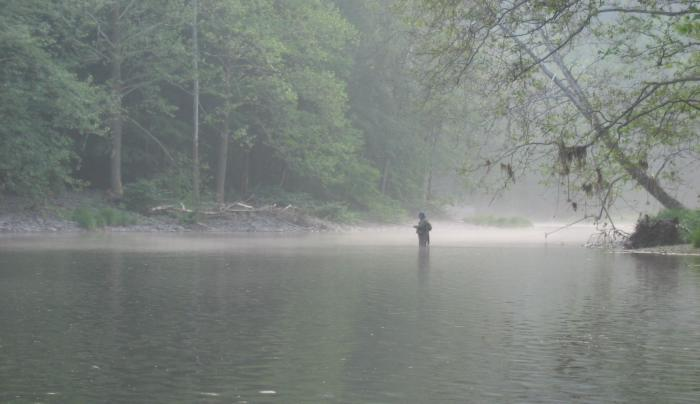 Fisherman on the East Branch Delaware River (C Olney).jpg