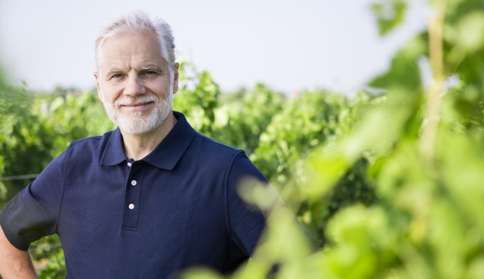 The Grapes of Roth by Wolffer Estate - Photo Courtesy of Roman Roth