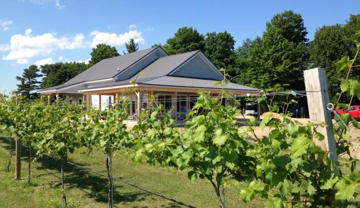 Vesco Ridge Vineyard