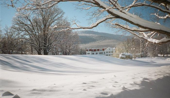 Winter Clove Winter
