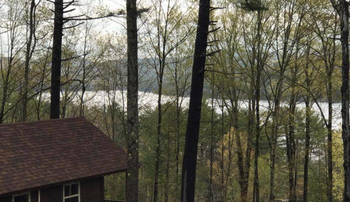 Adirondack Lakes Cabins