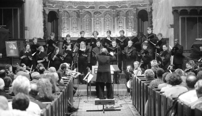 Ars Nova Musicians Chamber Orchestra