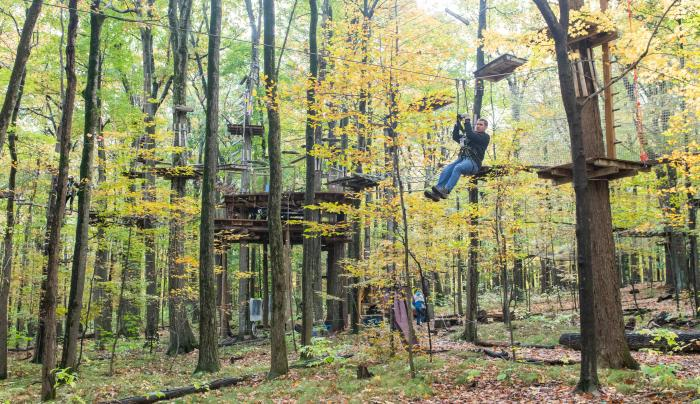 Wideshot of the Bristol Mountain Ariel Adventures treetop Obstacle Course
