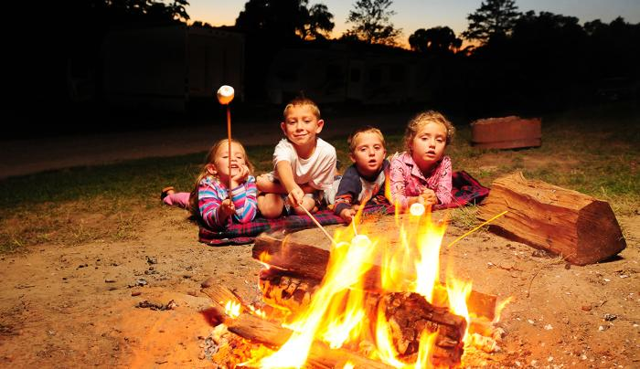 cheerful-valley-campground-phelps-kids-roasting-smores