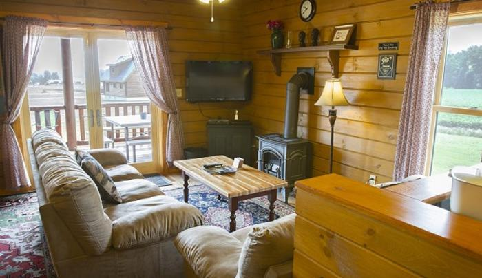cobtree-vacation-rentals-canadice-living-room
