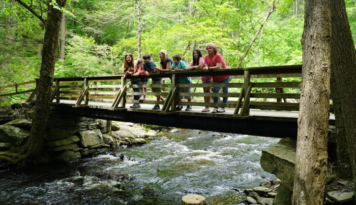 Let's hike!! Beaver Brook foot bridge