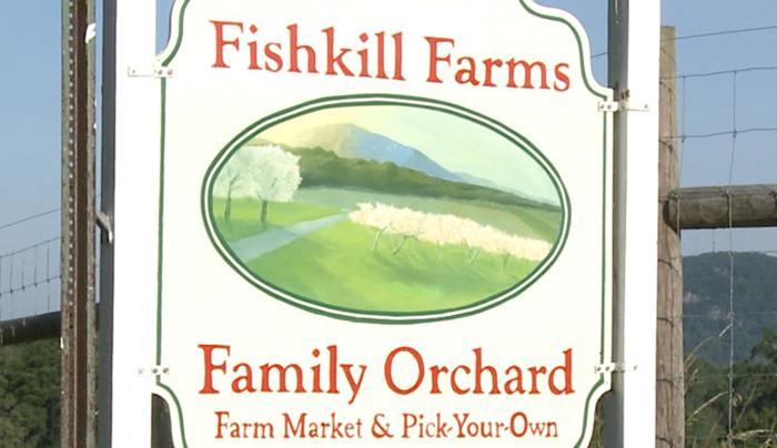 dcttabletthingsfarmfreshfarmsfishkillfarms.jpg