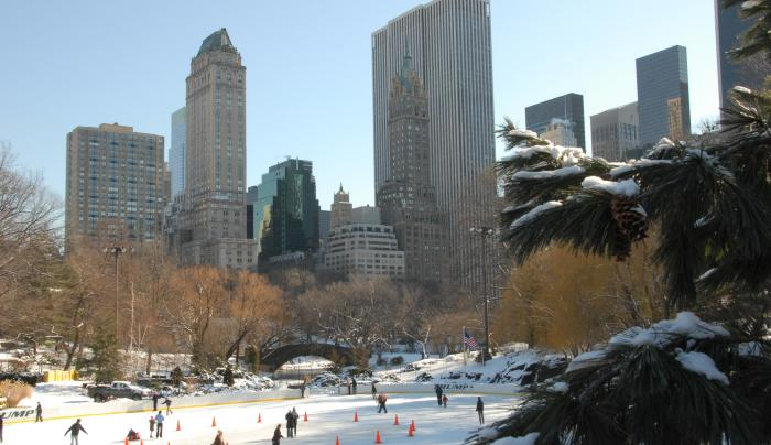 Central Park Conservancy—Official Central Park Tours