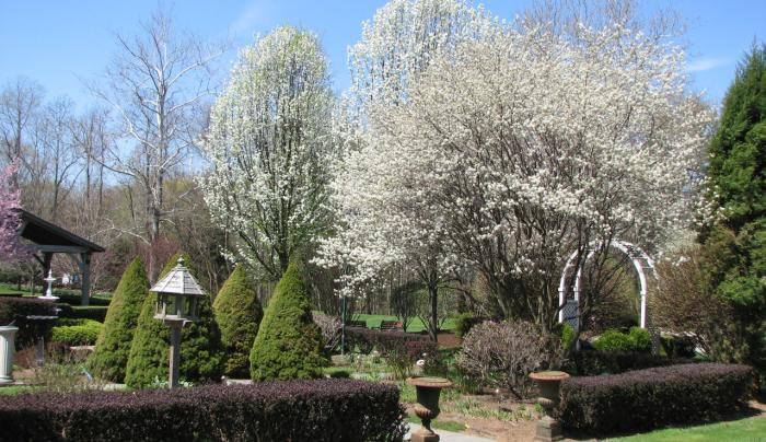 Bykenhulle - garden2
