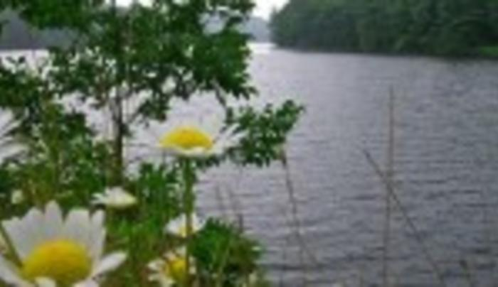 Mohican Lake Resort