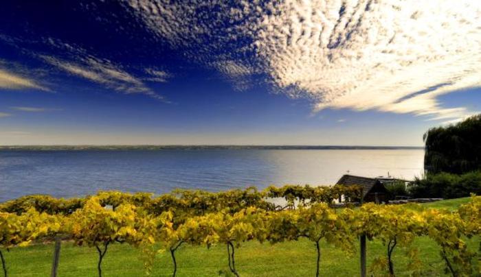 Cayuga_Lake_Wine_Trail_Lake_Shot