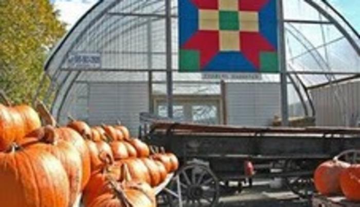 Autumn at Partyka Farms