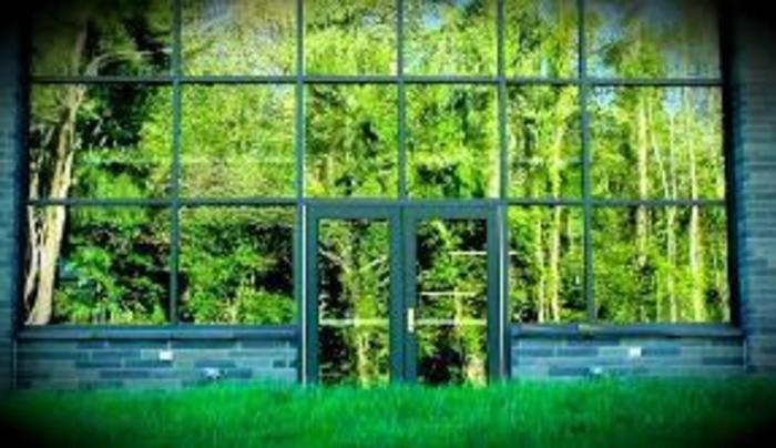 Windows on Nature