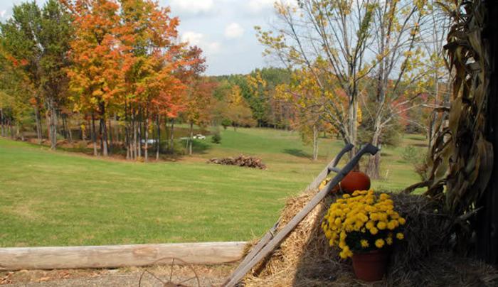 Rushford Lake Cottage Rentals