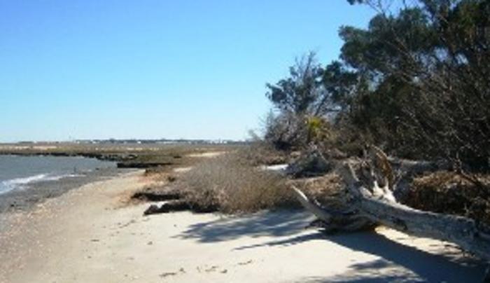 Sandy Island Beach State Park