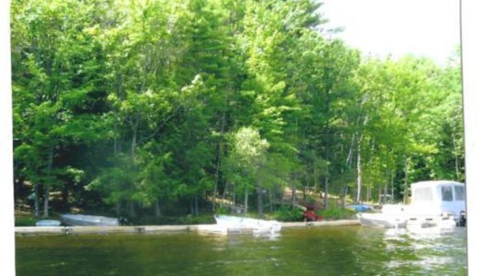Stewarts Pond Campsite
