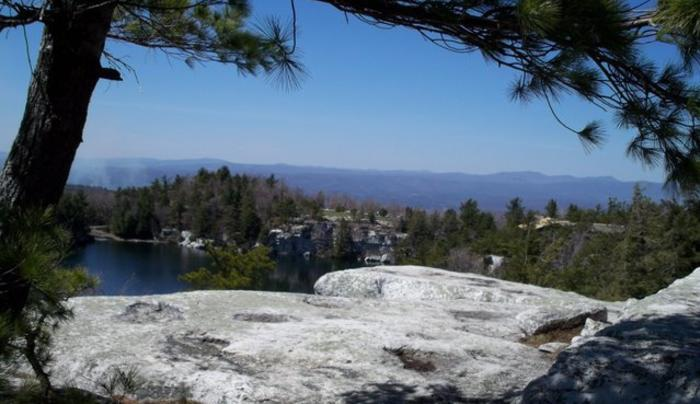 minnewaska tree & view.jpg