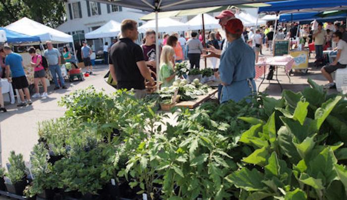 Farmers Market at the Williamsville Mill