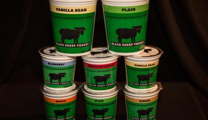 OCSC yogurt