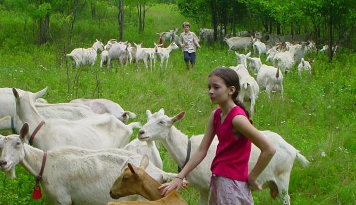 Kids with goats_2007.jpg