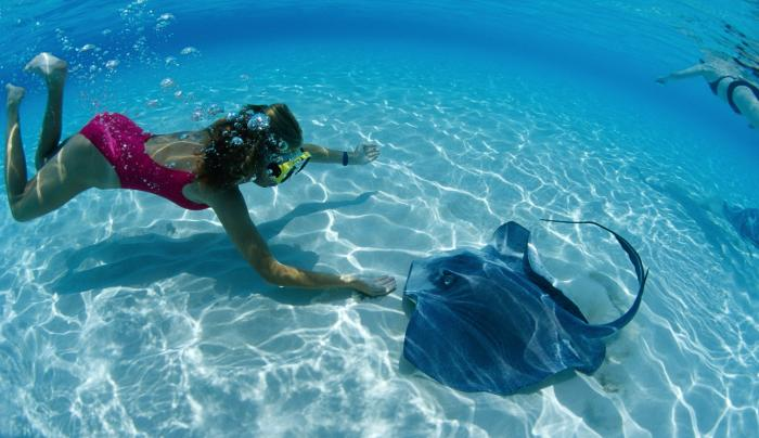 5D. Atlantis Marine World .jpg