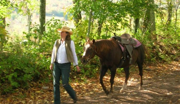 HorseWalkTrailRider_medium.jpg