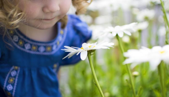 Botanical Gardens photo by Amanda Lonergan