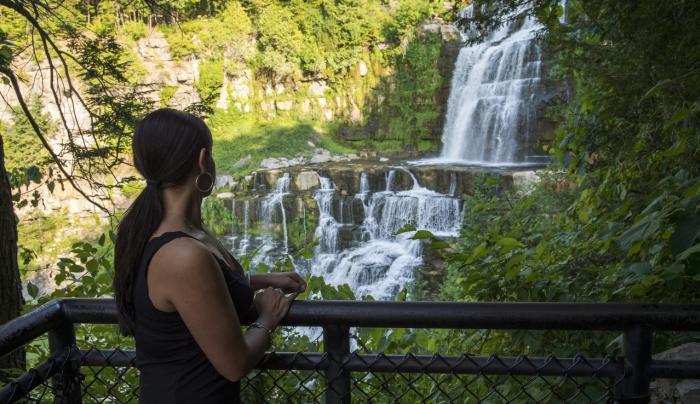 Chittenango Falls State Park