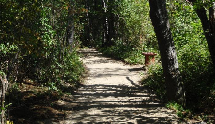 Carol A Thomas Trail