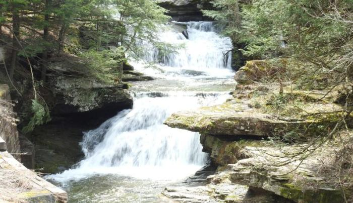 Tompkins Falls