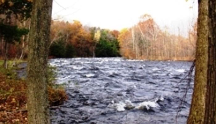 Salmon Acres Fishing Lodge - River