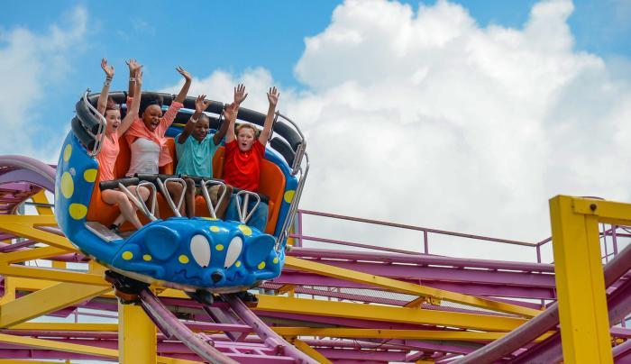Crazy Mouse Spinning Coaster - Fantasy Island