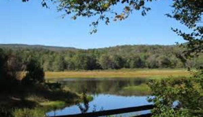 Frick Pond