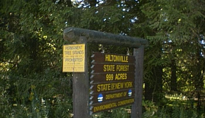 Hiltonville State Forest
