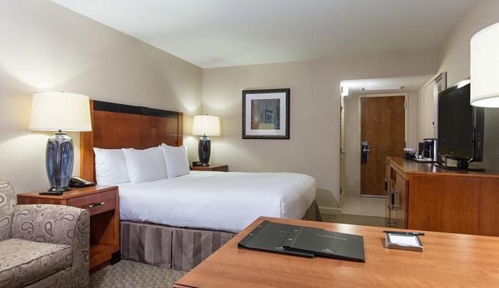 Hilton New York JFK Airport Standard King Room