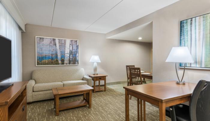 King Studio Suite Living Area