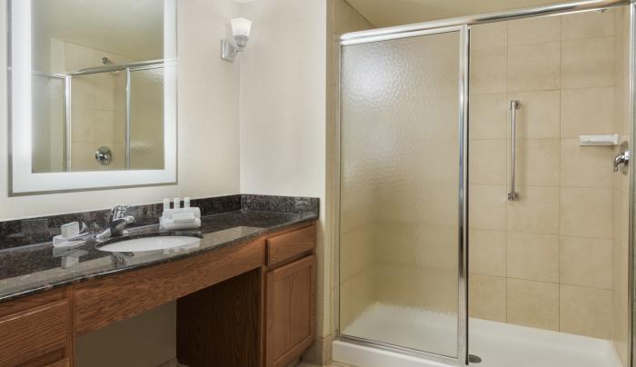 King Studio Suite Shower