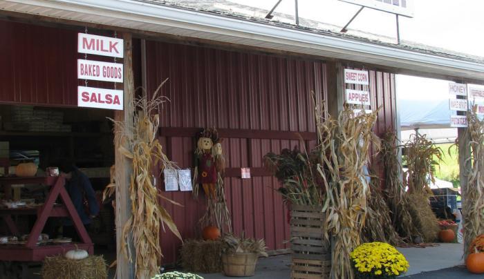 Morgan Farms