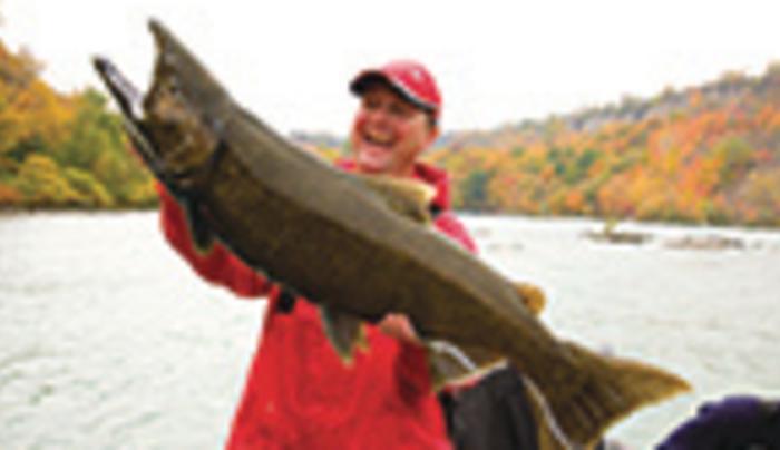 Niagara Region Sportfishing
