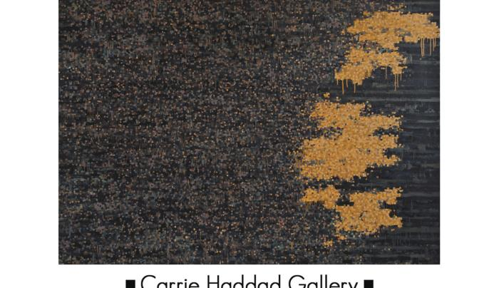 Carrie Haddad