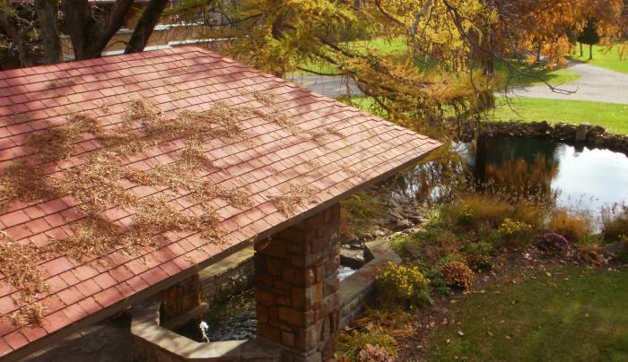 Graycliff Porte Cochere Autumn