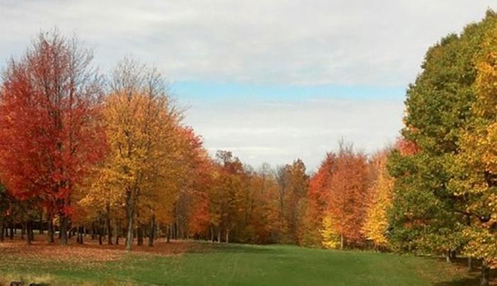 Springbrook Greens Golf Course - Fair Haven NY