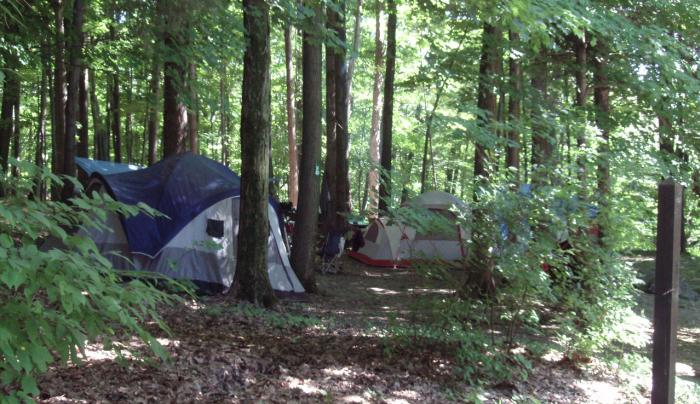 Taconic State Park - campsite
