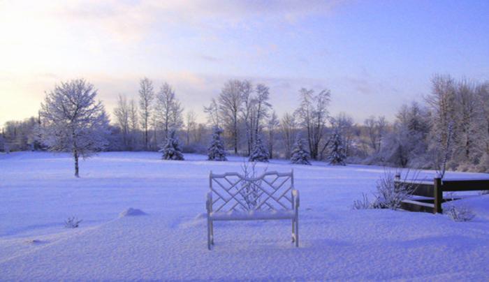 MapleStone Inn Field Bench Winter.jpg