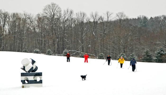 Cross Country Skiiers Omi The Fields