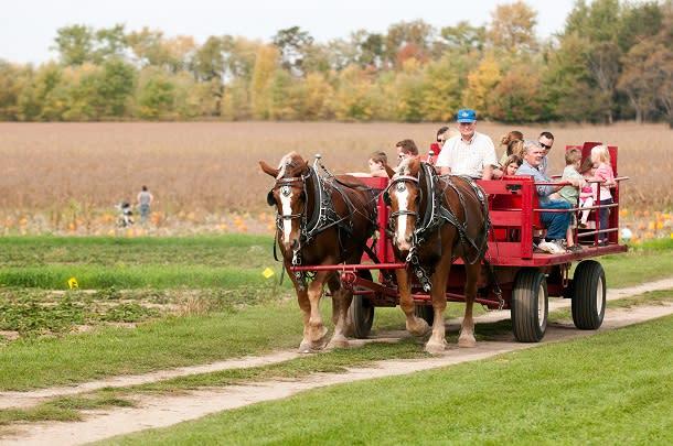 Great Lakes Farm
