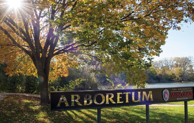 Arboretum in Fall