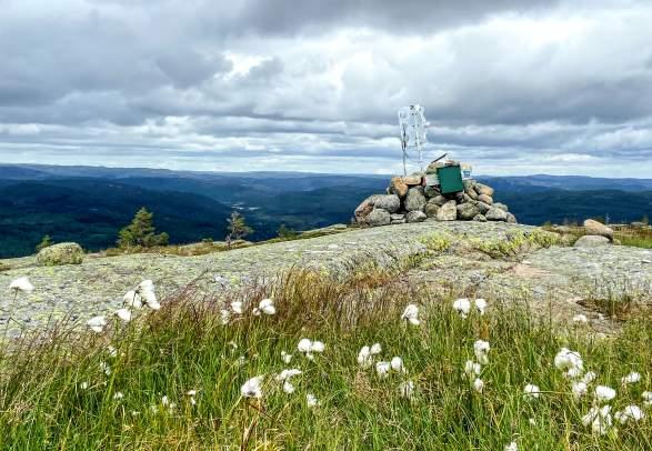 Snøfjell - tur/retur 6 km