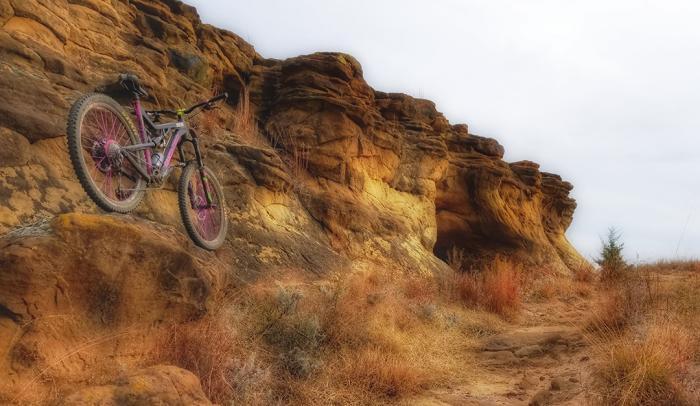 Mountain Biking Wilson - Shawn Spry